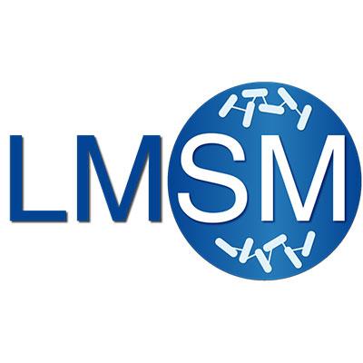 logo-lmsm